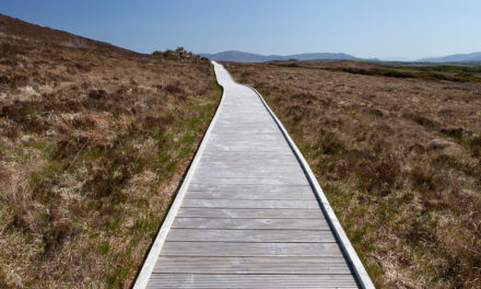 Conservation in Ballycroy National Park in the West of Ireland